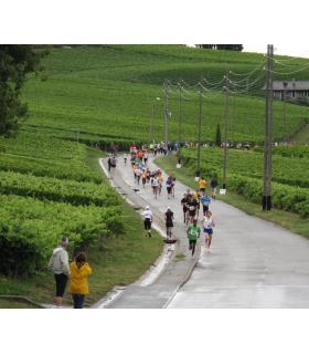 Une course écoresponsable entre vignes et champs. COURSE-DU-MANDEMENT.CH