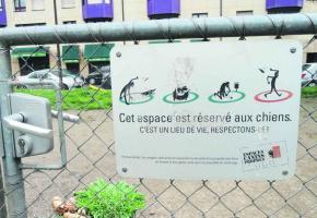 Le parc des Noirettes «souffre» comme beaucoup d'autres espaces pour chiens de propriétaires «indélicats».