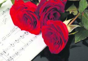 «20 violoncelles pour une rose»