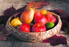 Quelques précautions sont nécessaires pour garder leur fraîcheur aux fruits durant tout l'hiver.