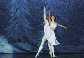Un ballet où se côtoient grâce, beauté et élégance.