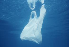 Un sac en plastique dans l'eau. Le lac en contient