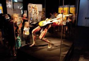 L'exposition a déjà été vue par plus de 44 millions de personnes dans le monde. En médaillon, le magistrat Mauro Poggia. DR PHOTO EN MEDAILLON