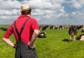 Deux initiatives majeures pour l'avenir de notre paysannerie et celui de notre alimentation. 123RF/IVONNE WIERINK