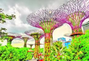 Les spectaculaires serres de «Gardens by the Bay» invitent à la promenade.