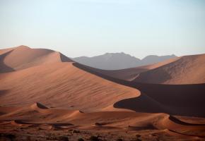 Sur le continent africain, l'évolution des êtres humains se fait  au gré des variations climatiques et environnementales. DR