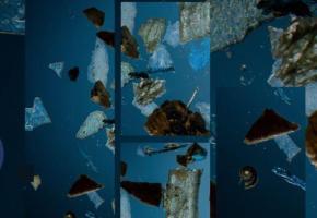 Des fragments de microplastiques presque magnifiés par le photographe Fred Merz. OCEANEYE