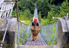 Découvrir un tourisme écologique et équitable envers les populations autochtones.DR