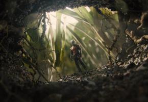 «Ant-Man», réalisé par Peyton Reed, est sorti en 2015. DR