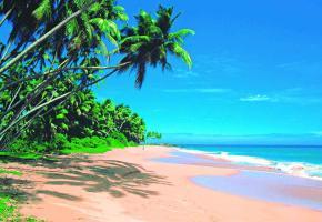L'île compte des plages magnifiques, tout particulièrement sur sa côte est.