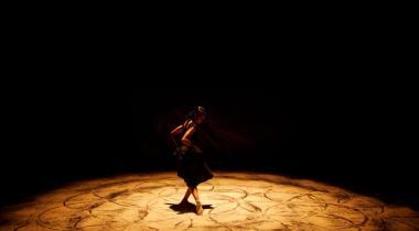 Une fusion instantanée entre cirque et danse. DR