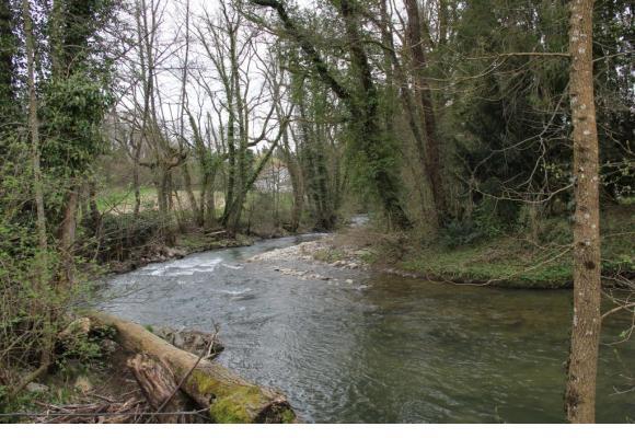 La rivière serpente à travers  les bois. MAIRIE DE VERSOIX