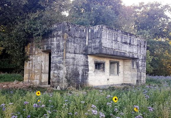Le parcours permet d'apercevoir une vingtaine de fortins et emplacements de tir. MUSÉE MILITAIRE GENEVOIS
