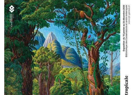 L'exposition permet de rappeler l'importance de la forêt amazonienne. CJBG