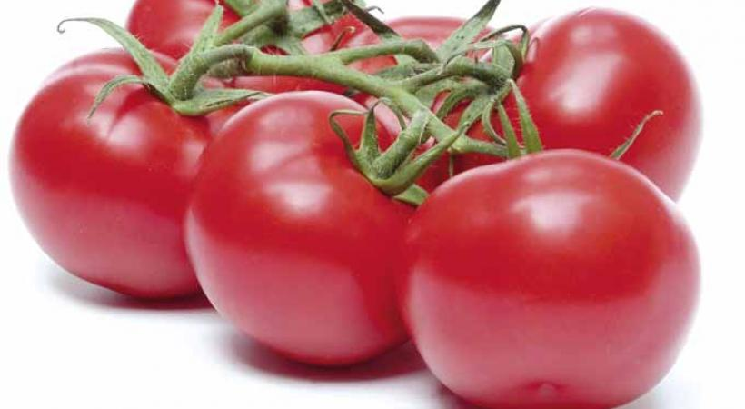 Insalata caprese aux tomates confites