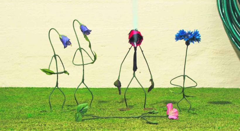 The Garden Plot,, un des films proposés aux enfants.