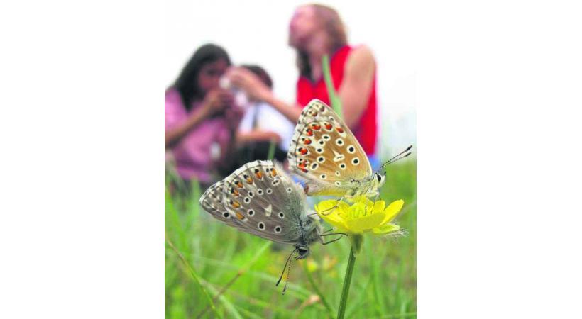 Une week-end entier dédié à la nature.