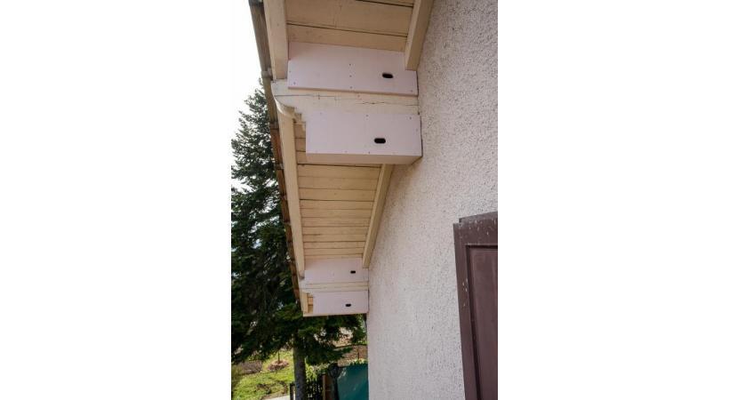 Des nichoirs pour martinets installés sous les avant-toits d'une maison.