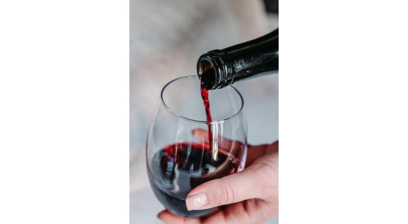 Le «Swiss Wine Tour» réunit les cantons de Genève, Vaud, Neuchâtel, Berne, celui du Valais et du Tessin. UNSPLASH