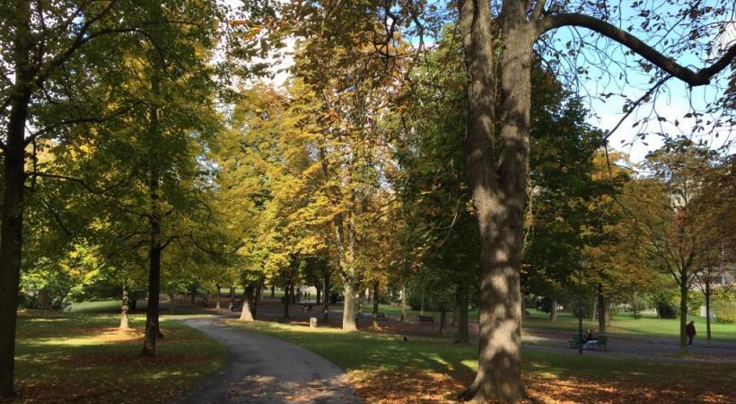 Avec ses 150 variétés d'arbres, le parc des Bastions est de toute beauté en automne. DR DR