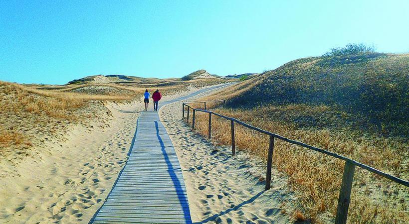 Promenade dans les dunes typiques de la Baltique. NICOLE BRATKE