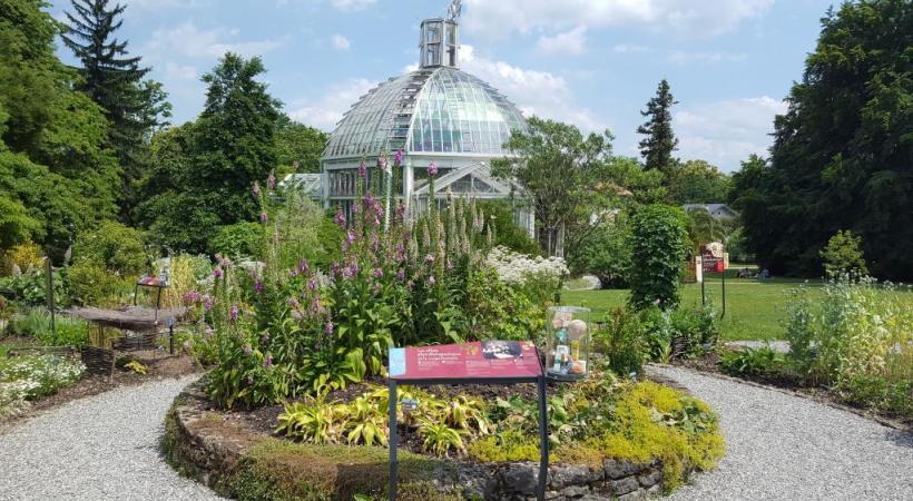 le jardin botanique de genve un fringant bicentenaire dr - Jardin Botanique Geneve