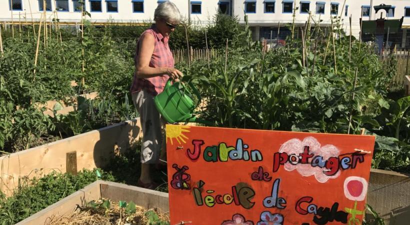 Les plantations collectives et écologiques de Saint-Jean. PHOTOS FRANCIS HALLER