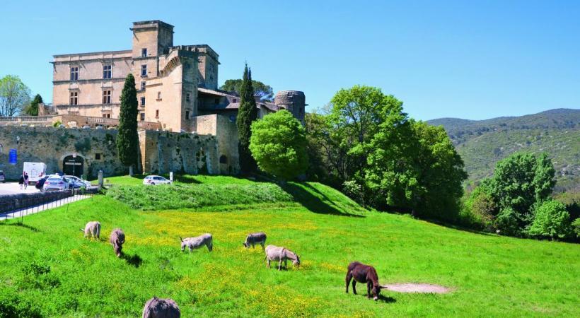 Le château de Lourmarin. A. BOSSU