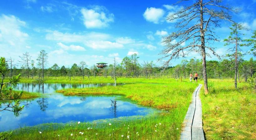 De superbes environnements naturels à quelque distance des villes.