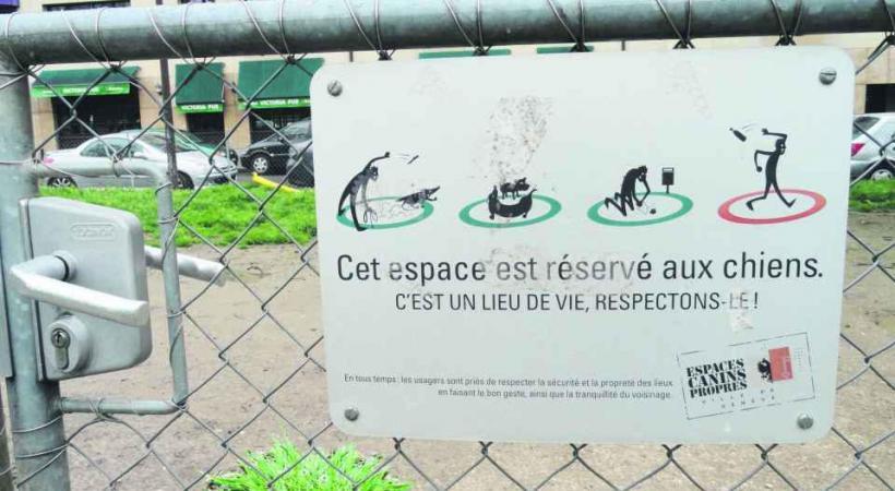 Une crotte laissée sur l'espace public peut valoir une amende de 200 francs. DR