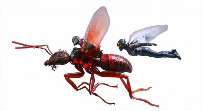 Le film «Ant-Man et la guêpe» sera projeté le 18 juillet prochain  à 20h30 à l'Arena Cinéma. DR