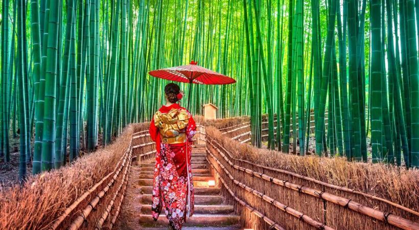Fushimi Inari, le sanctuaire aux 10'000 torii dans la montagne de Kyoto. En quelque sorte un lieu de pèlerinage.