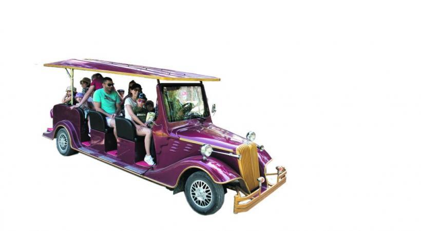 Des voitures électriques customisées et leurs chauffeurs s'arrêtent sur simple demande des visiteurs.