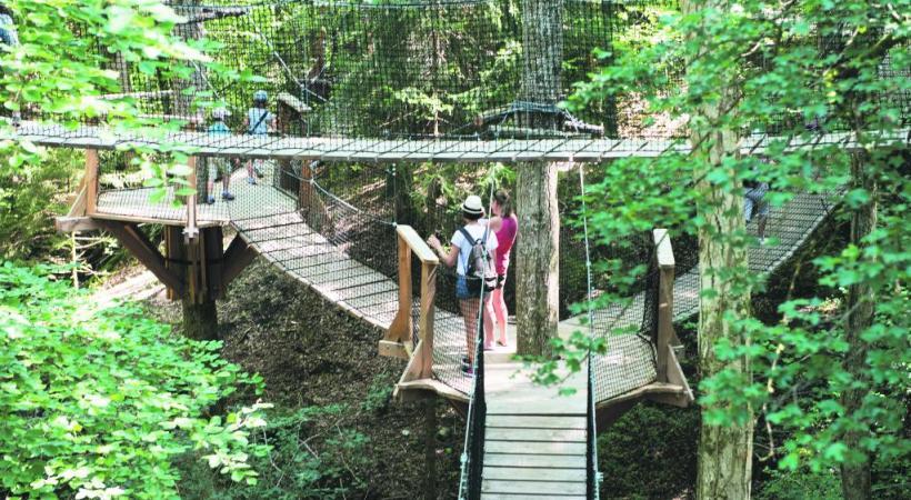 Un labyrinthe constitué de passerelles suspendues entre les arbres. Une manière originale