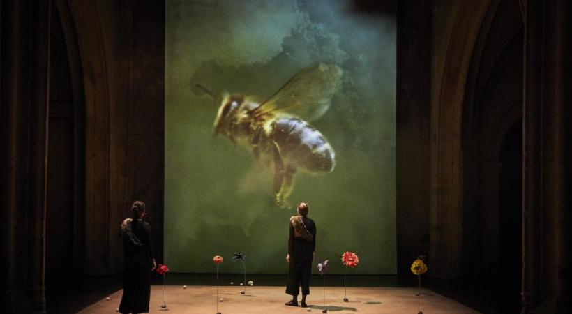 La pièce raconte la romance qui se noue depuis 100 millions d'années entre les abeilles et les fleurs. ELIE BARTHES